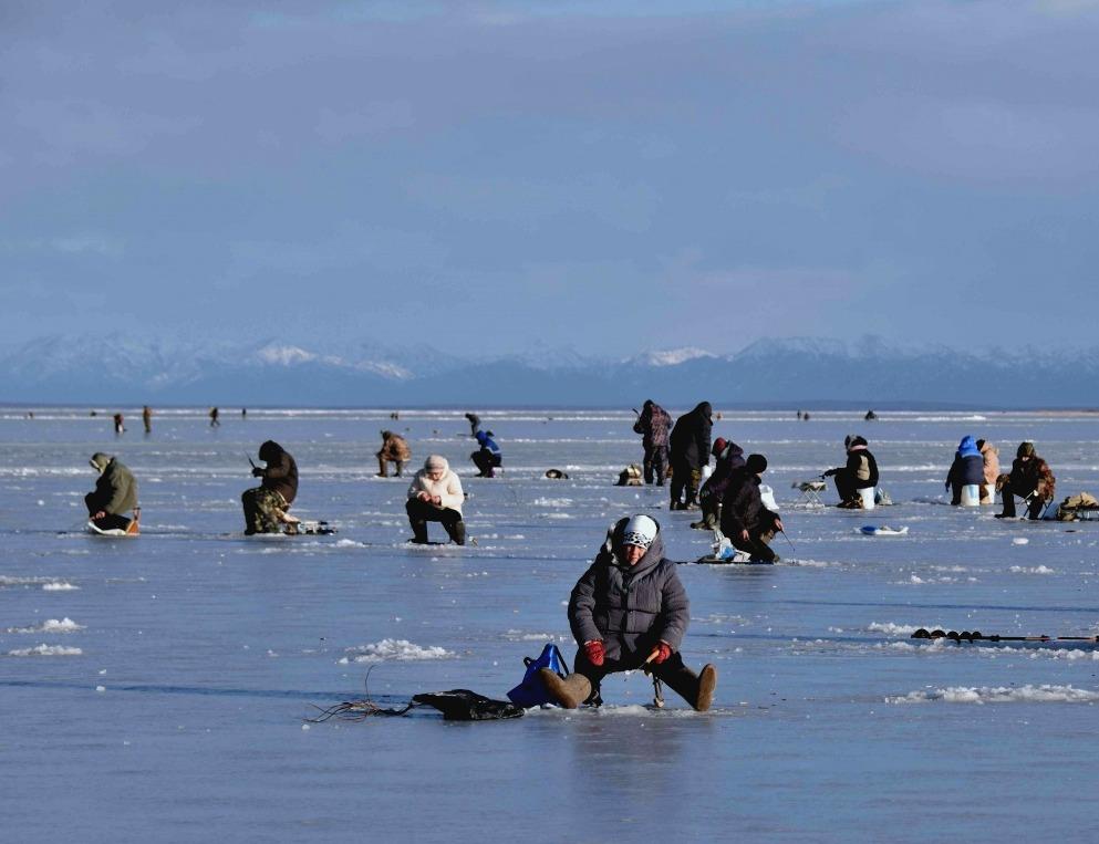 на что ловить рыбу зимой: лайфхаки
