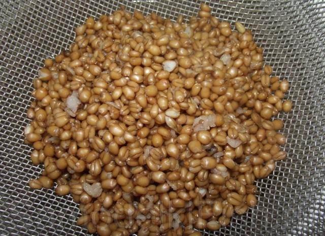 Запаренная пшеница для рыбалки